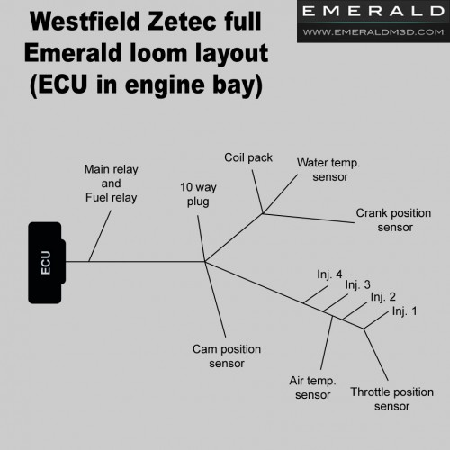 full westfield zetec wiring harness loom for emerald ecu westfield zetec full harness loom for emerald aftermarket standalone ecu ecu in engine