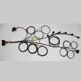 6 cylinder Generic loom (harness) for Emerald aftermarket standalone K6 ECU (engine management system)