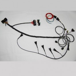 Emerald Full ECU wiring Loom - Duratec